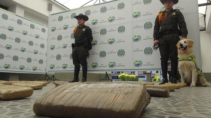 En la Terminal de Transporte de Popayán, la Policía Cauca incautó 50 kilogramos de marihuana.