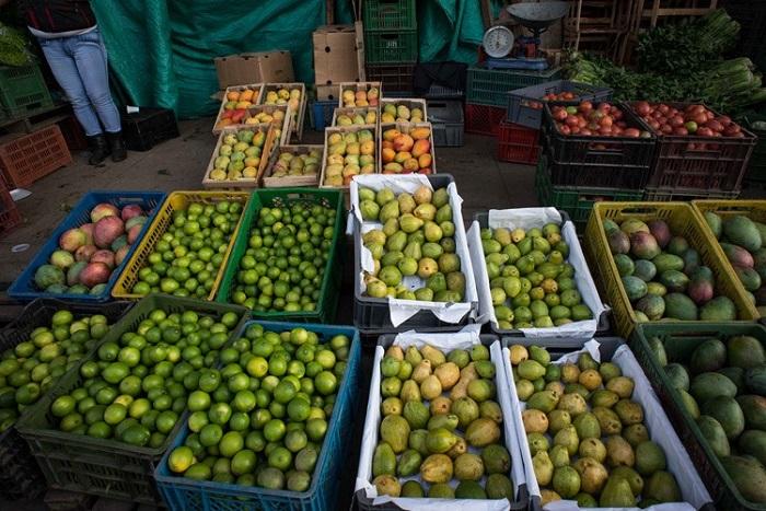 Costo de los alimentos sigue en caída, plátano, fríjol y papa, los que más bajan