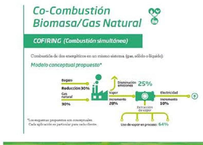 Gas Natural y Bioenergía, naturalmente complementarios.
