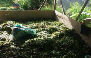 250 kilos de hoja de coca fueron incautados en el Tambo.