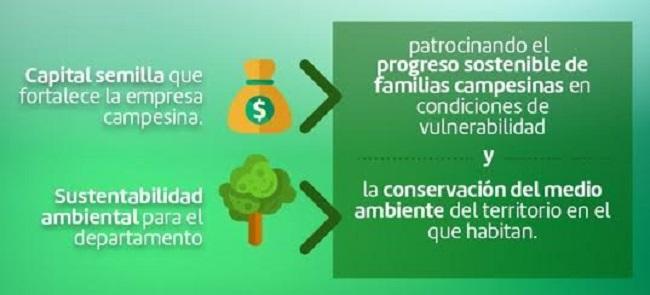 GdO,  primera empresa del Valle del Cauca en certificar la captura de carbono.