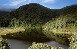 Cuatro complejos de páramos del Cauca fueron delimitados