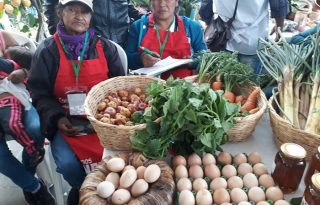 Los mercados verdes se toman al Cauca