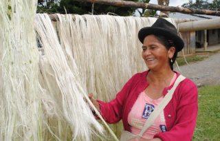 Productores de Caldono lideran diálogo social con la ART y FAO